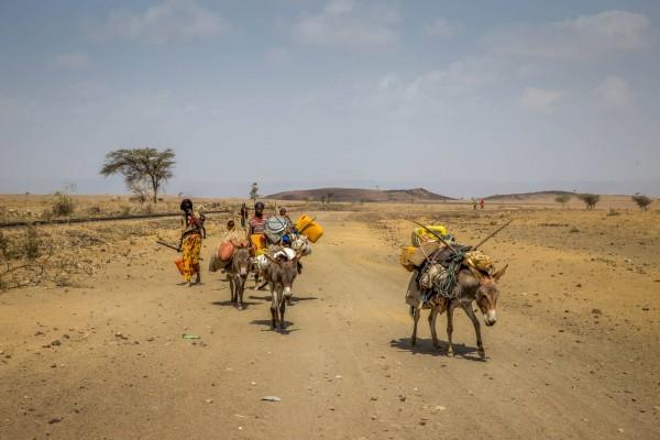 Plus de 180 millions de personnes manquent d'eau potable