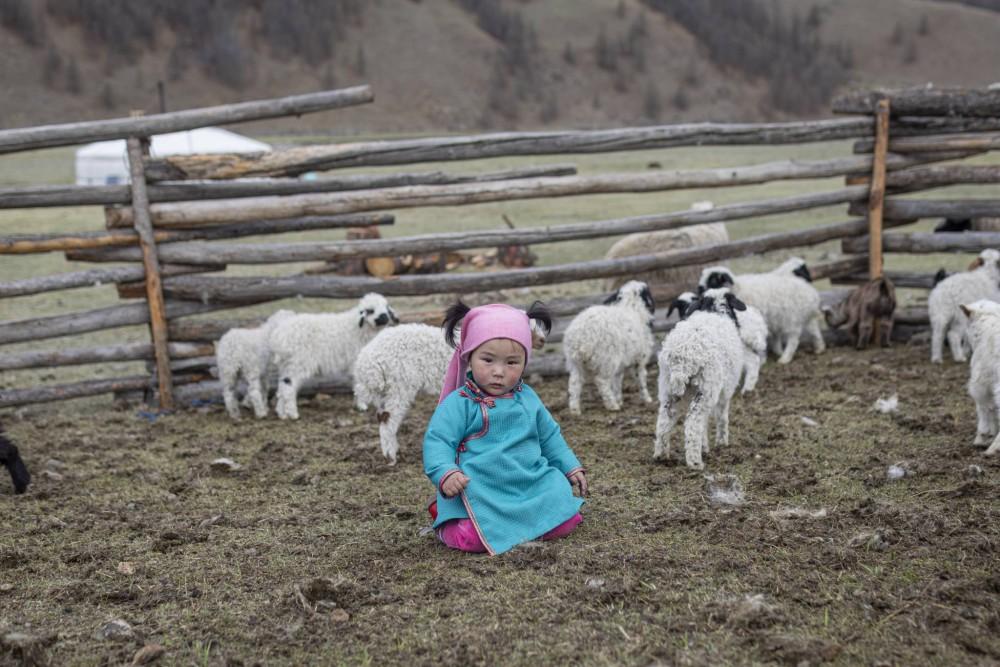 Education en Mongolie